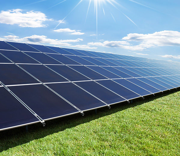 Daytime view of solar panels in a ground-level solar array